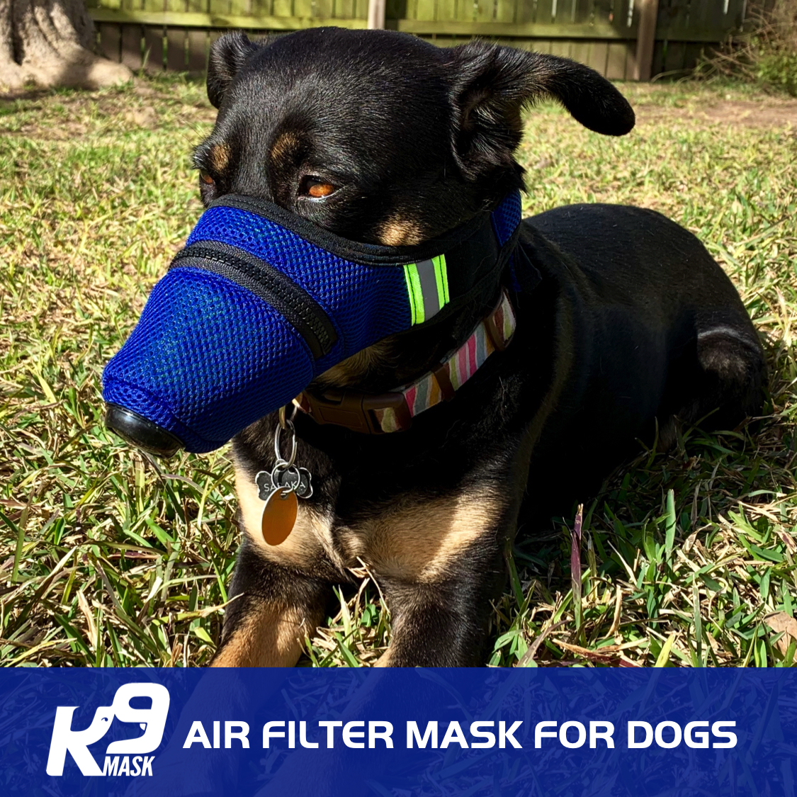 K9_Air_Filter_Mask_For_Dogs_JPG